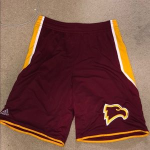 WINTHROP Eagles basketball shorts